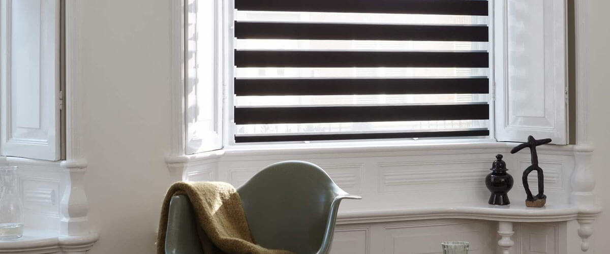 Twist Vision / Day & Night Blinds